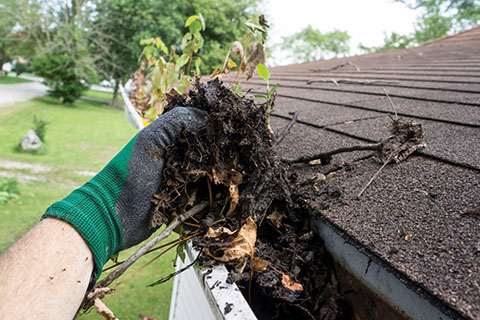 best Gutter Roof Cleaning services in Melborune Victoria